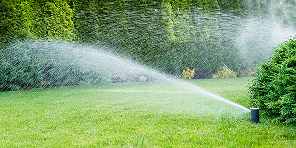 Professional Irrigation Services in PA
