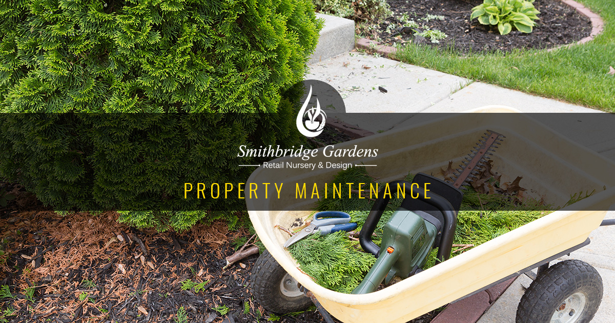 Property Maintenance Delaware County, PA
