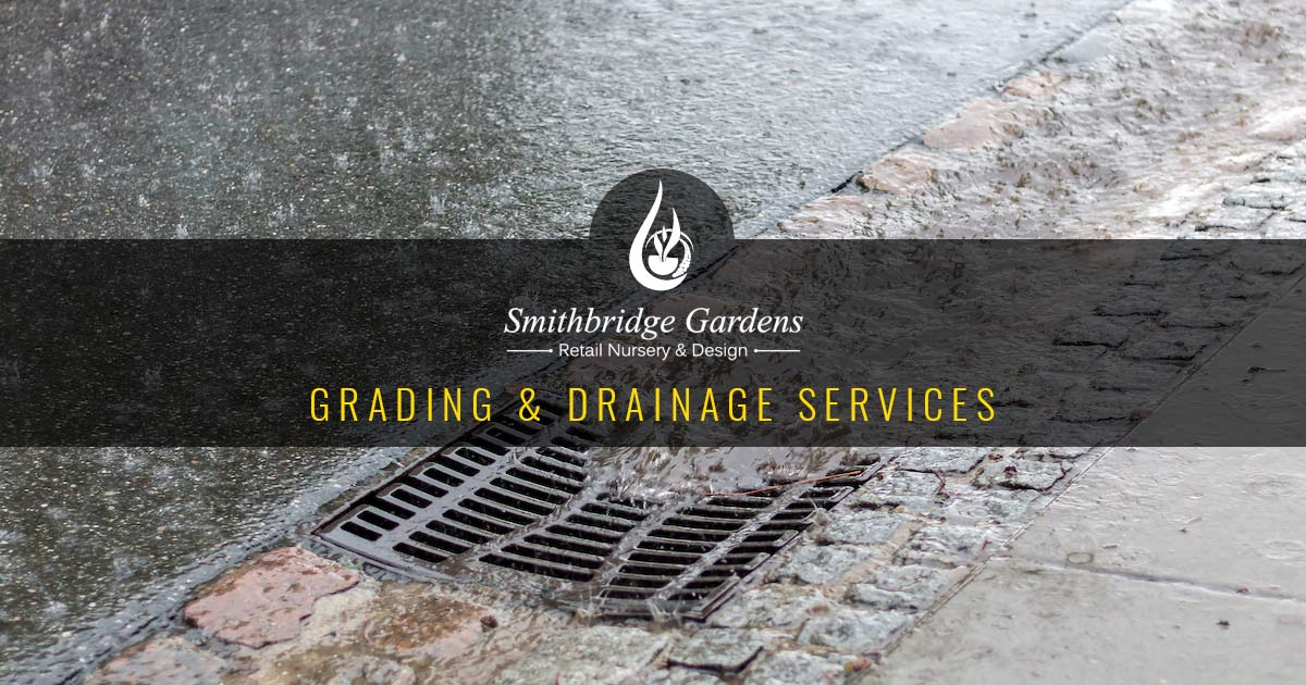 Yard Drainage Grading Services